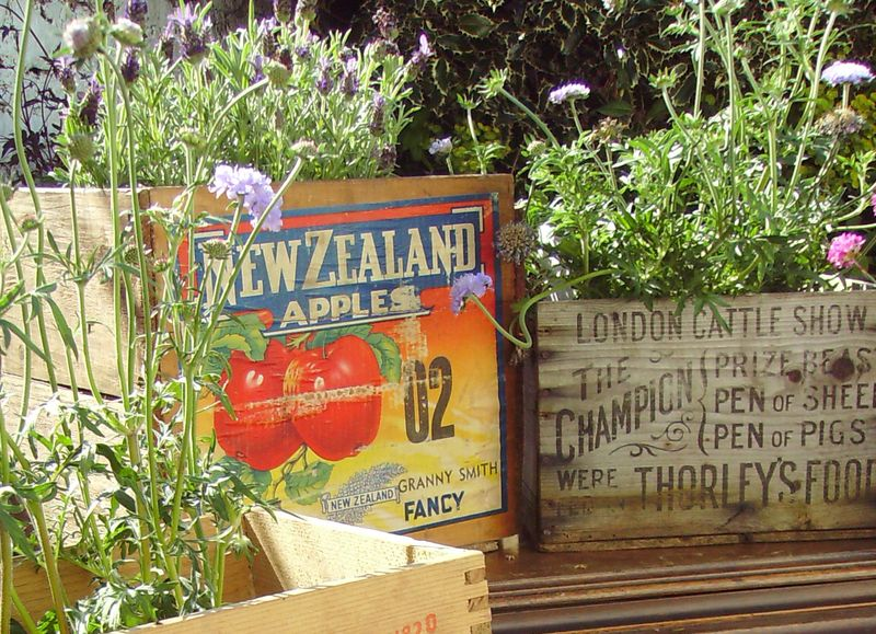 vintage crates with flowers, vintage wooden boxes.