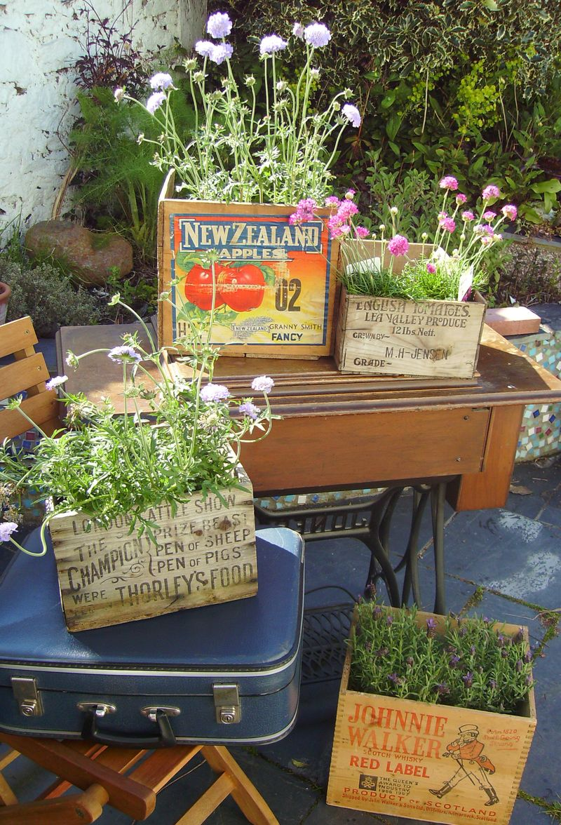 vintage crates with flowers, vintage wooden boxes